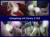 Geiler Gangbang mit Sunny Kiss - Teil 4